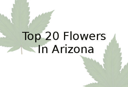 Marijuana Phoenix | Top 20 Marijuana from Marijuana Dispensaries and Caregivers