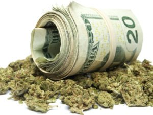 How low can cannabis go?